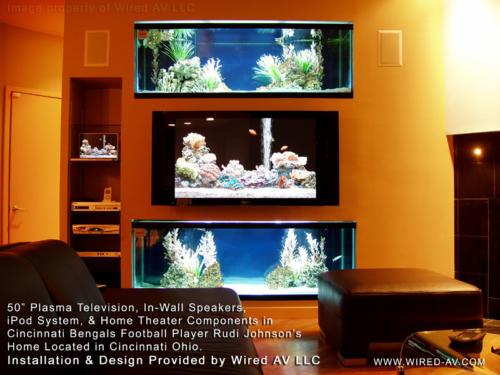 Rudi Johnson TV between aquariums custom installation
